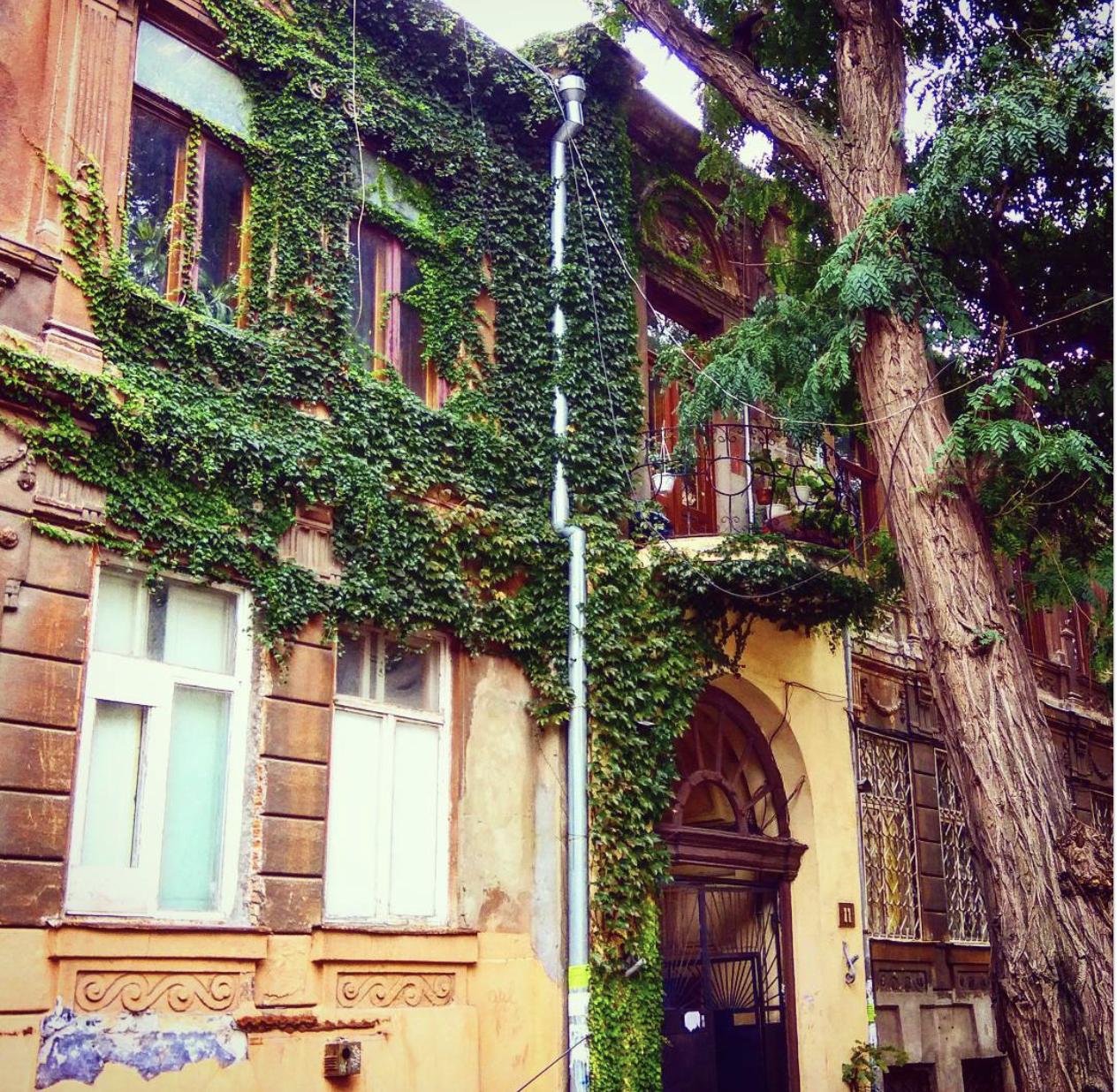 Теплая осень — в одесском Instagram (фото)