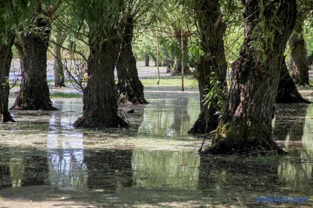 В Одесской области открыли новый экологический парк