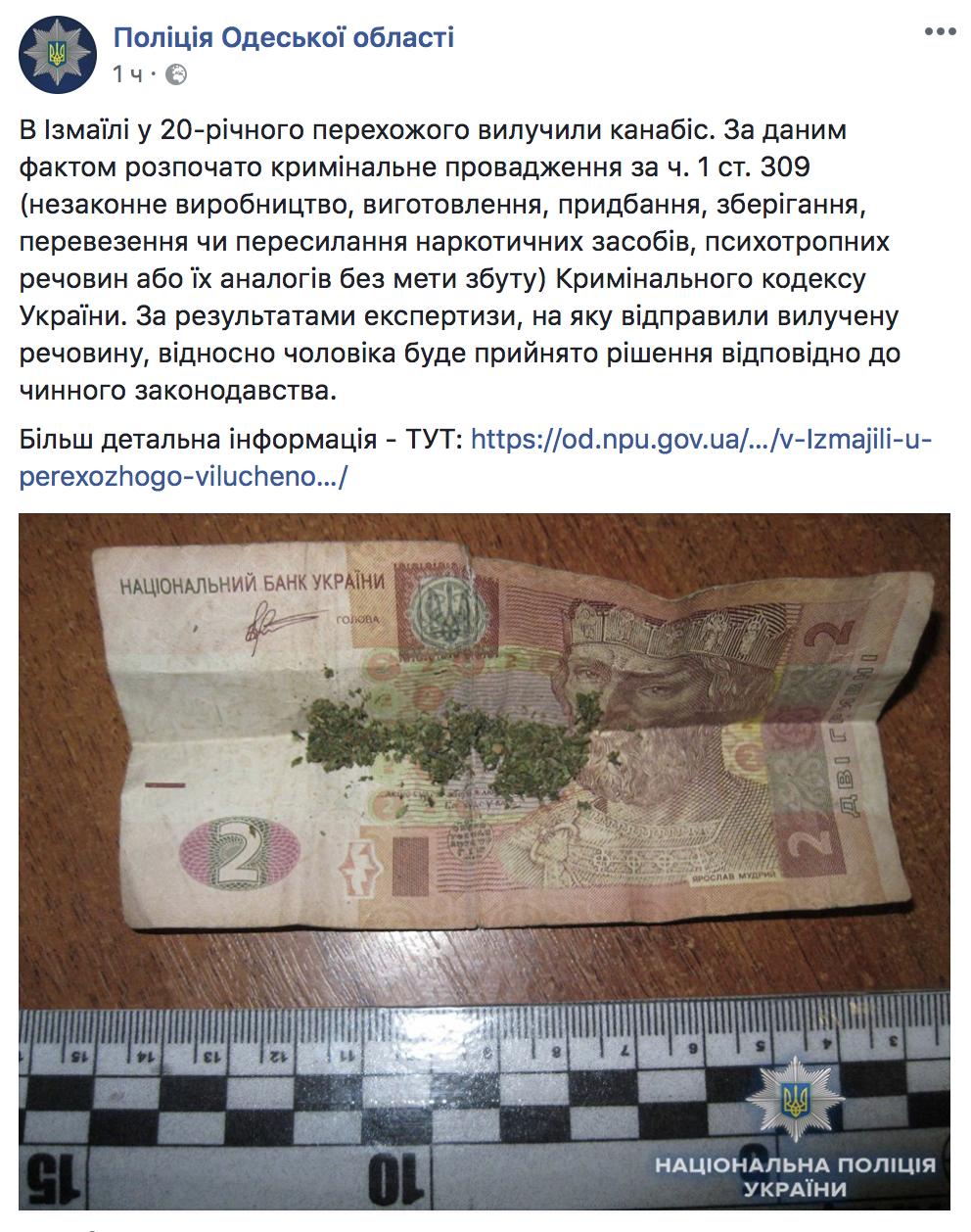 В полиции Одесской области сообщили об изъятии каннабиса в Измаиле — это вызвало иронию пользователей