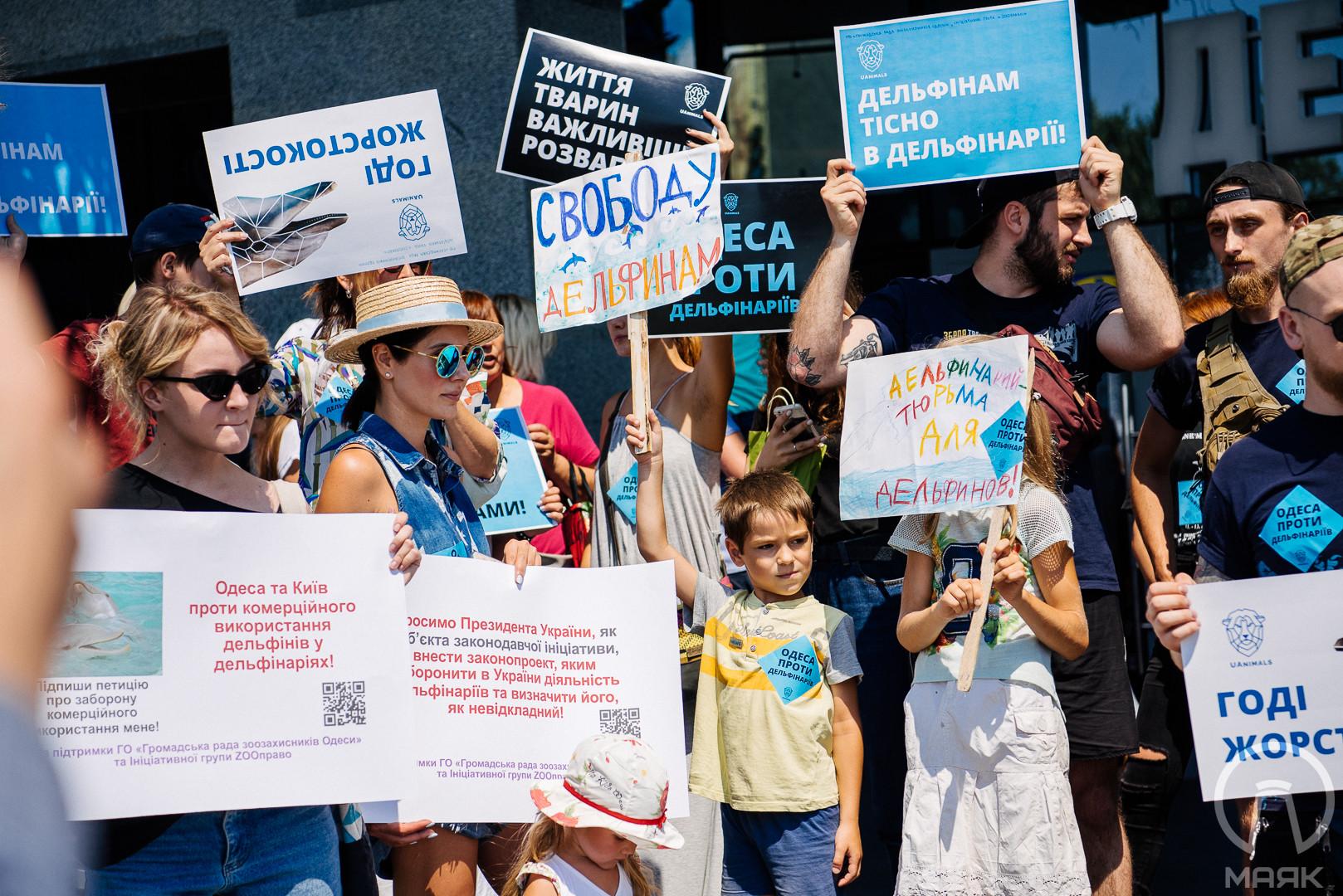 В Одессе пикетировали дельфинарий, требуя запрета использования дельфинов в шоу