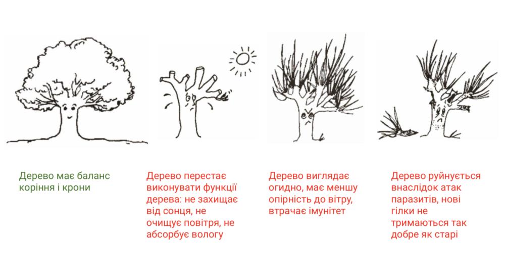Визуализация — презентация львовских активистов.