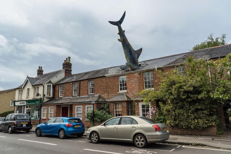 Хедингтонская акула.