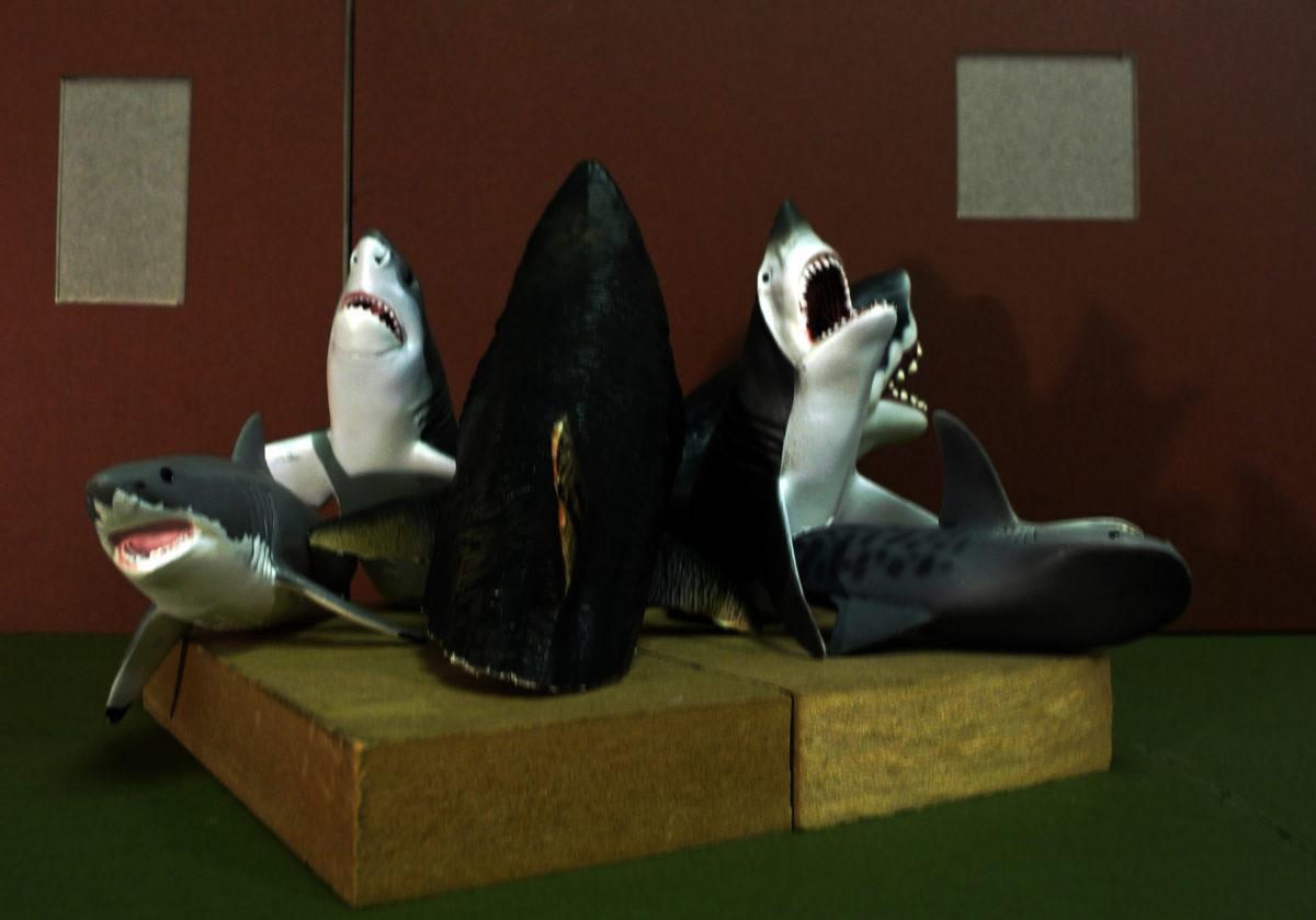 Макет инсталляции Sharks!.
