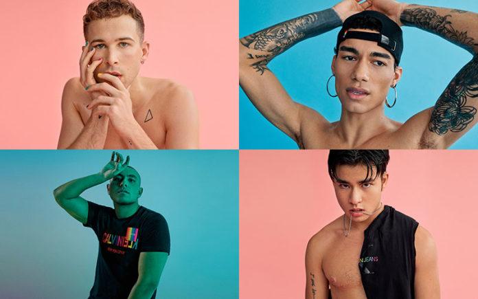 Изображение — Gay Nation.
