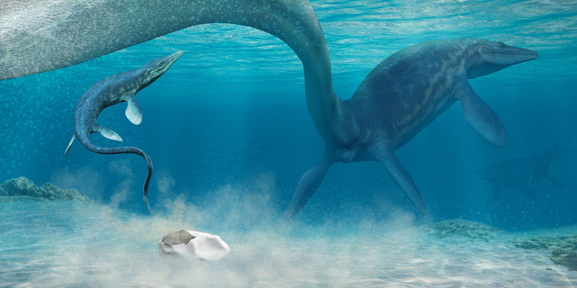 Художественное моделирование рождения мозазавра. Иллюстрация — Francisco Hueichaleo.