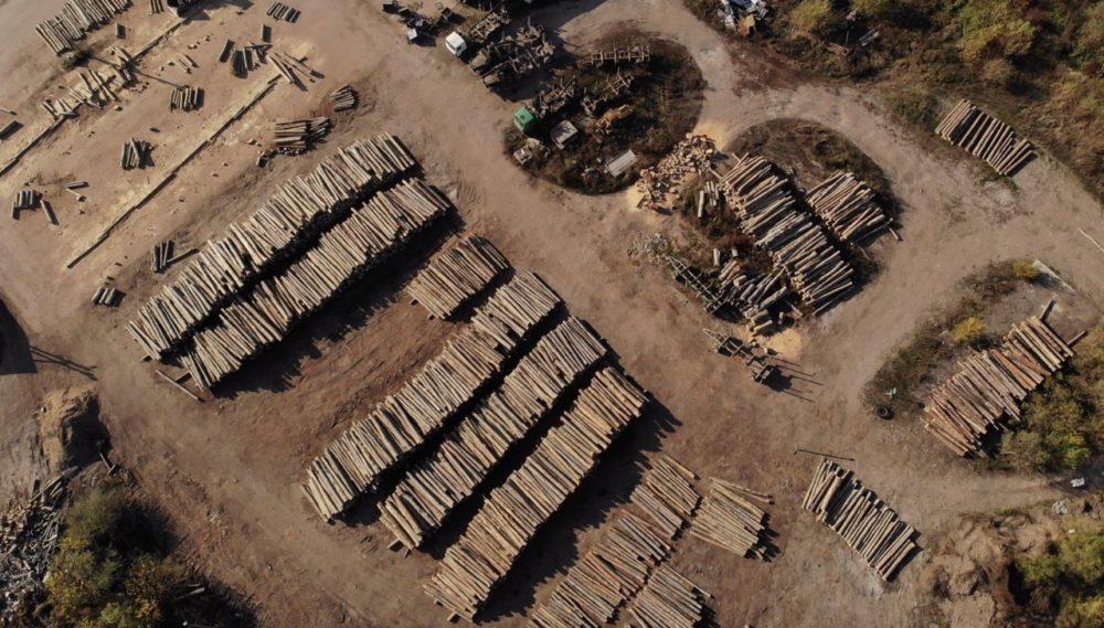 Буковые бревна в ожидании обработки на производстве «ВГСМ».Фото —Earthsight.