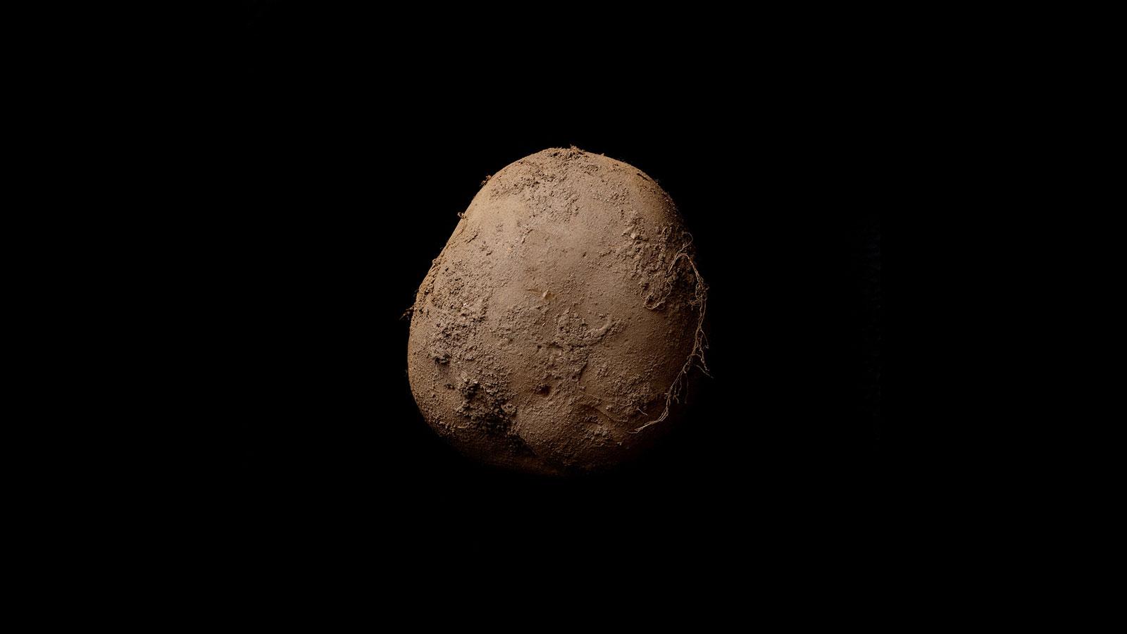 «Картофель #345 (2010)». Кевин Эбош.