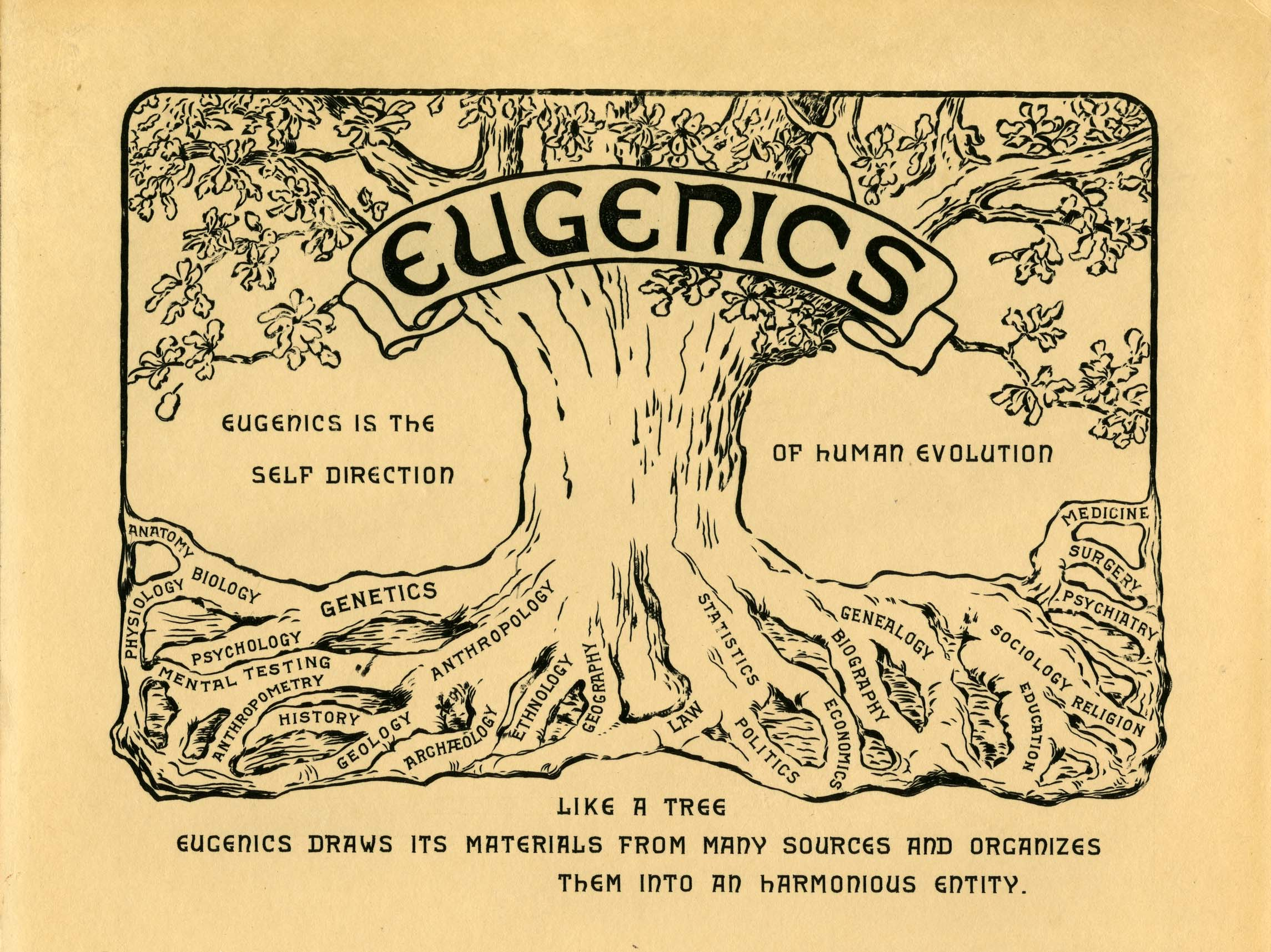 Евгеника (от древнегреческого εὐγενής — хорошего рода, благородный) — учение о селекции применительно к человеку, а также о путях улучшения его наследственных свойств.