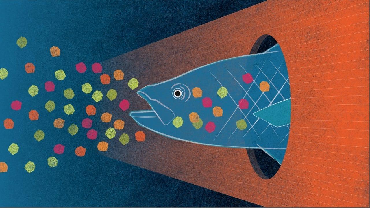 На дне мирового океана скопилось более 14 миллионов тонн микропластика. Исследование