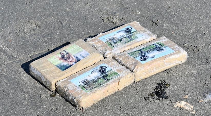 В Нидерландах на пляж выбросило почти 300 килограмм кокаина. «Подышать воздухом у моря» приехали сотни людей