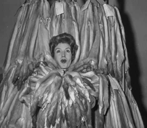 Мисс норка, 1960 год.