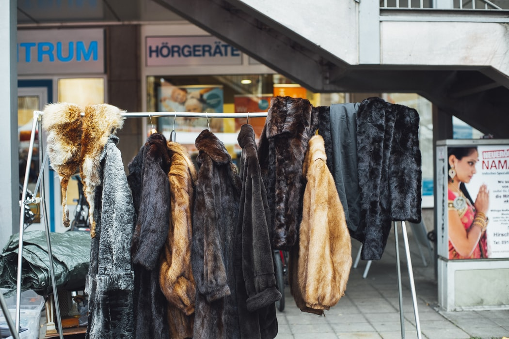 Израиль планирует первым в мире запретить покупку и продажу натурального меха