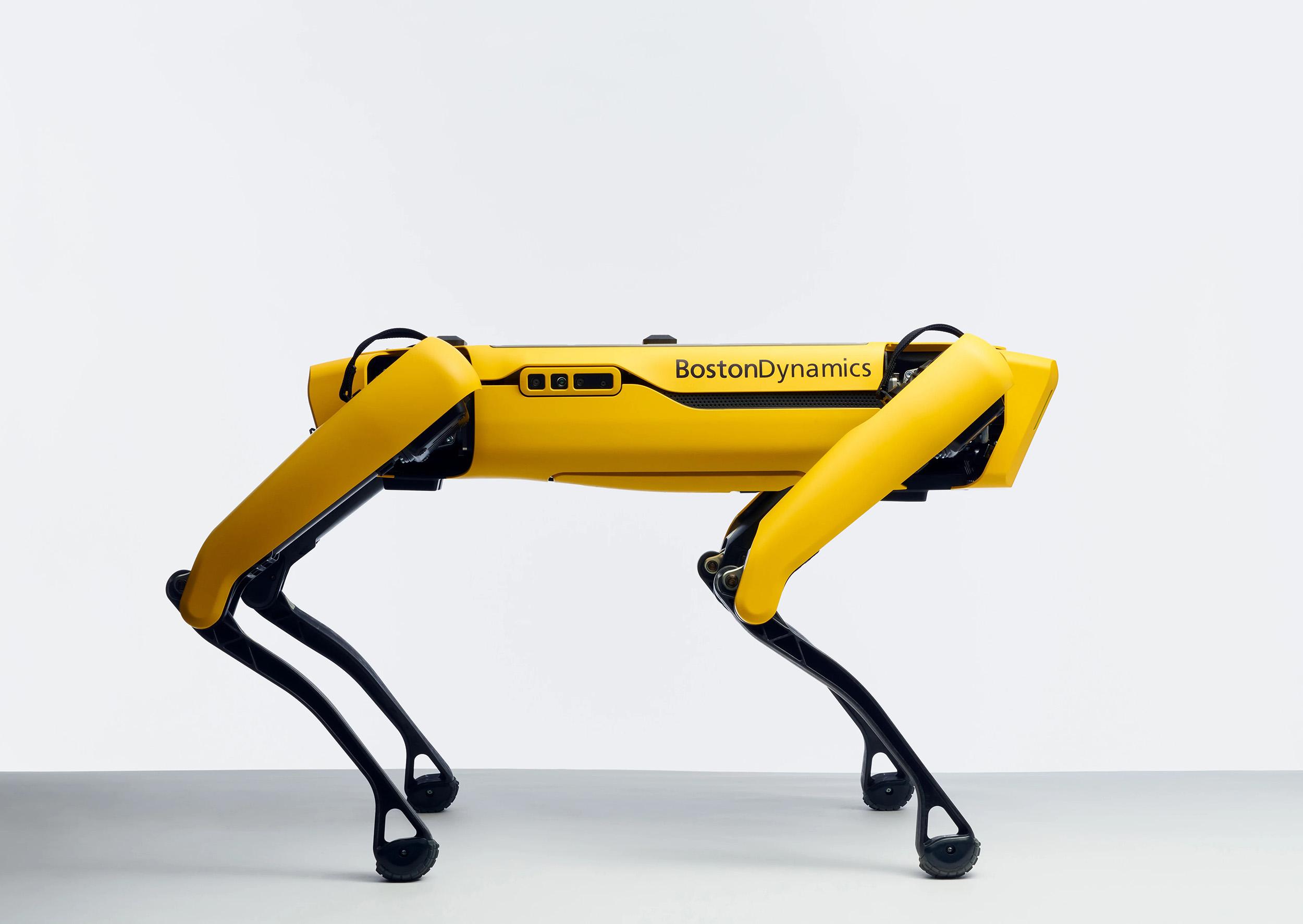 В зоне отчуждения впервые провели испытания робопса от Boston Dynamics