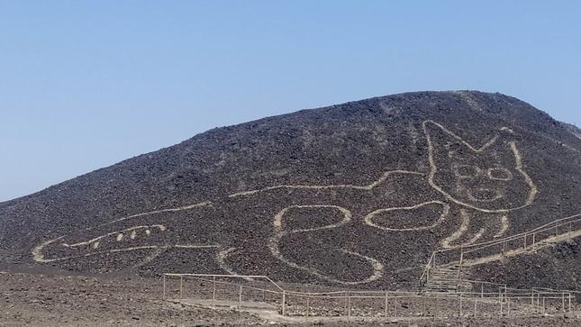 В Перу обнаружили новый геоглиф. Это изображение кота, ему две тысячи лет