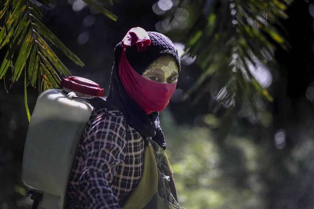 Невидимые женщины. Изнасилования и страх на плантациях пальмового масла — его используют ведущие косметические бренды