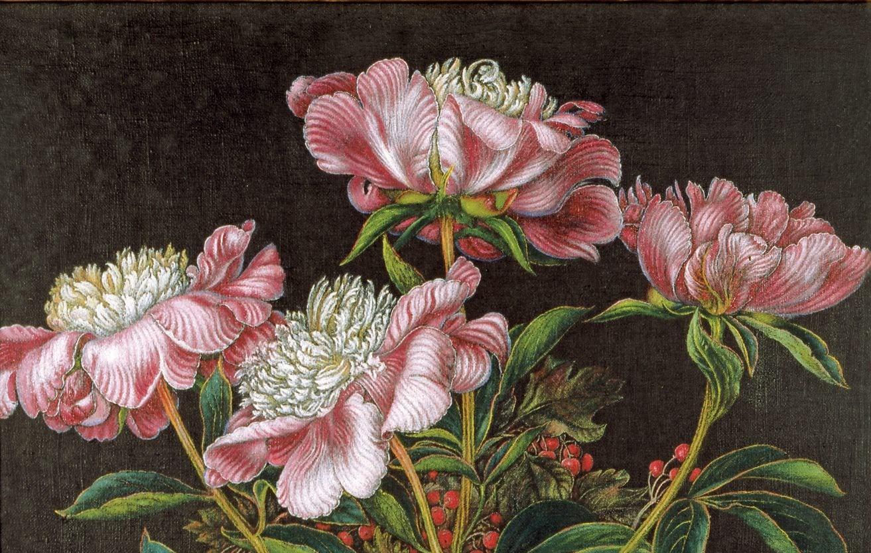 Google посвятил дудл украинской художнице Катерине Белокур. Ею восхищался сам Пикассо