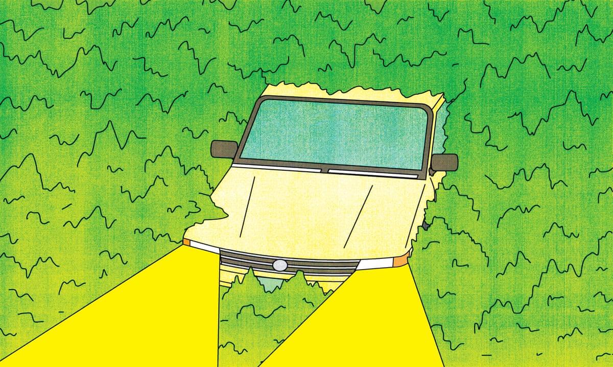 Употребление каннабидиола не влияет на качество вождения автомобиля. Исследование