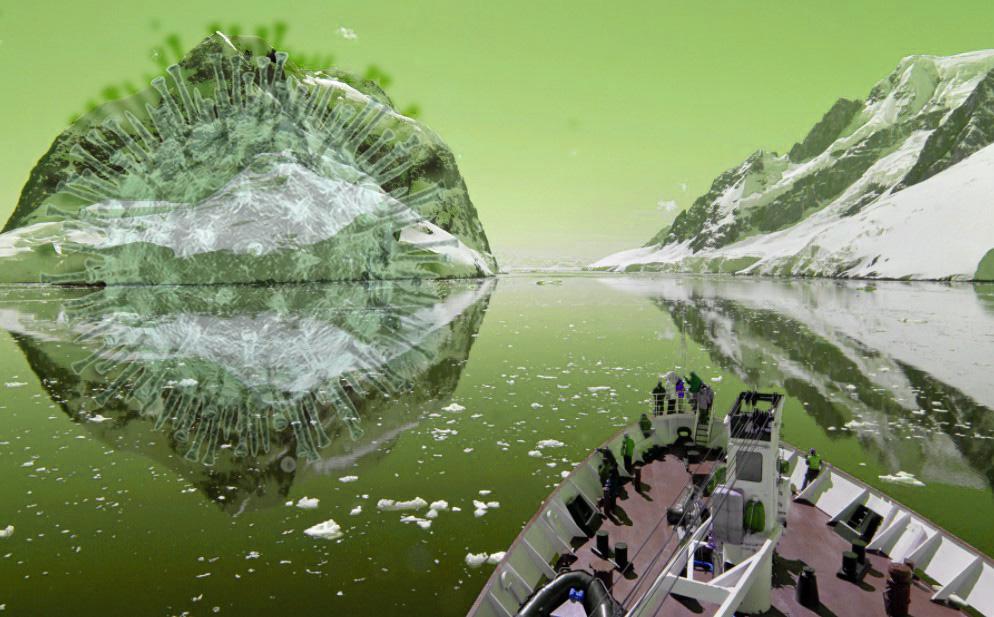 Коронавирус обнаружили в Антарктиде