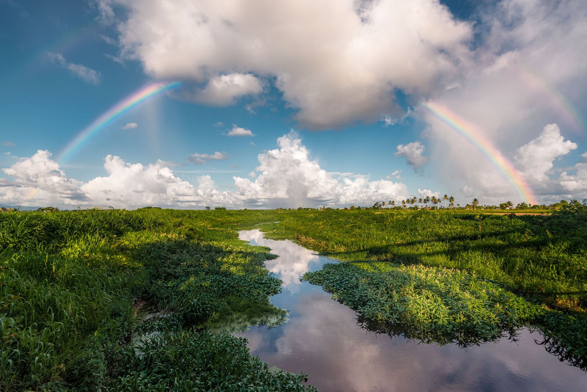 Фото — «Двойная радуга над равнинами Карони». Карони, Тринидад и Тобаго. Автор — Ziad Joseph.