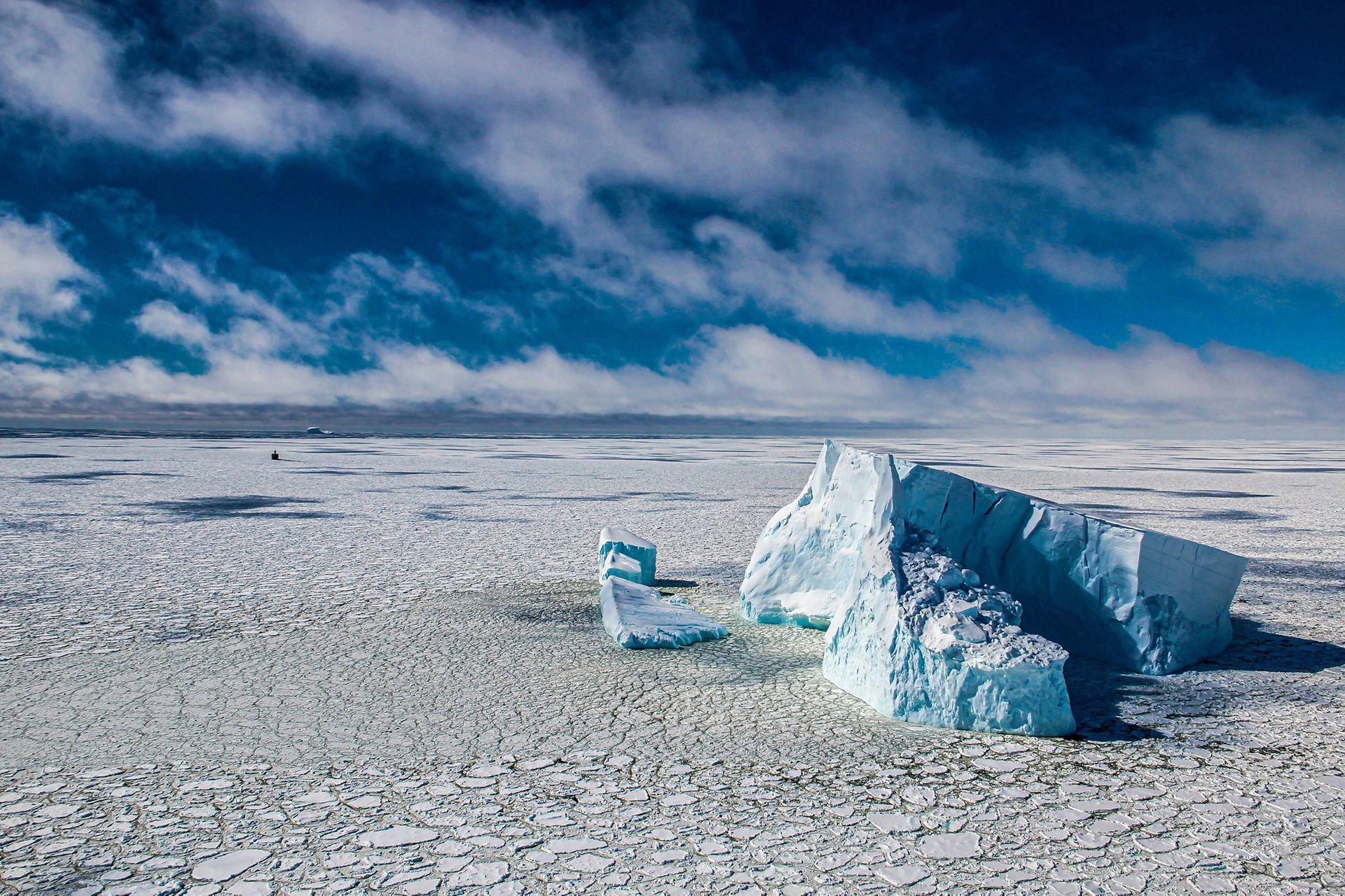 Фото — «Плавание между льдом и айсбергами в море Беллинсгаузена, Антарктика». Автор — Gonzalo Bertolotto.