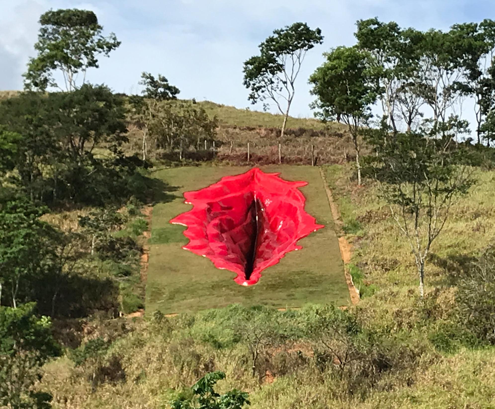Снимок дня. 33-метровая железобетонная вульва в бразильском парке