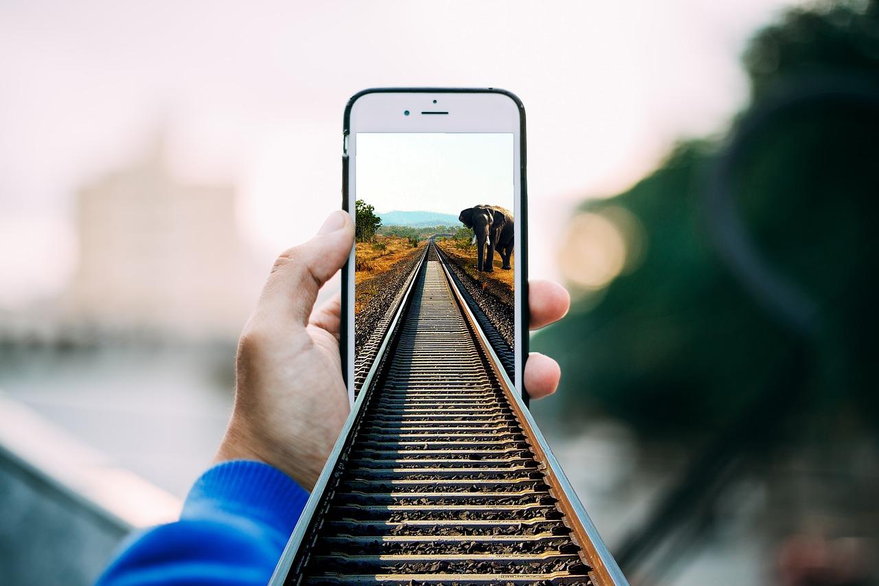 «Укрзалізниця» запустила чат-ботов в Viber и Telegram. Через них можно купить билеты