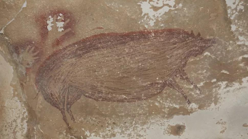 Найдено самое древнее изображение животного. Это свинья, ей 45 500 лет
