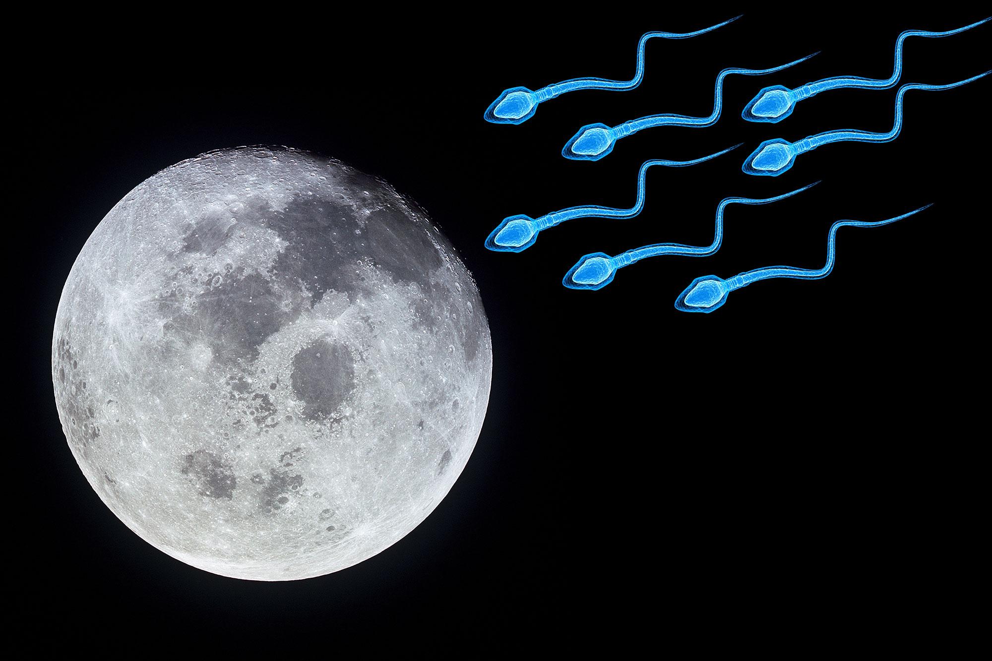 Американский ученый предлагает создать банк спермы на Луне