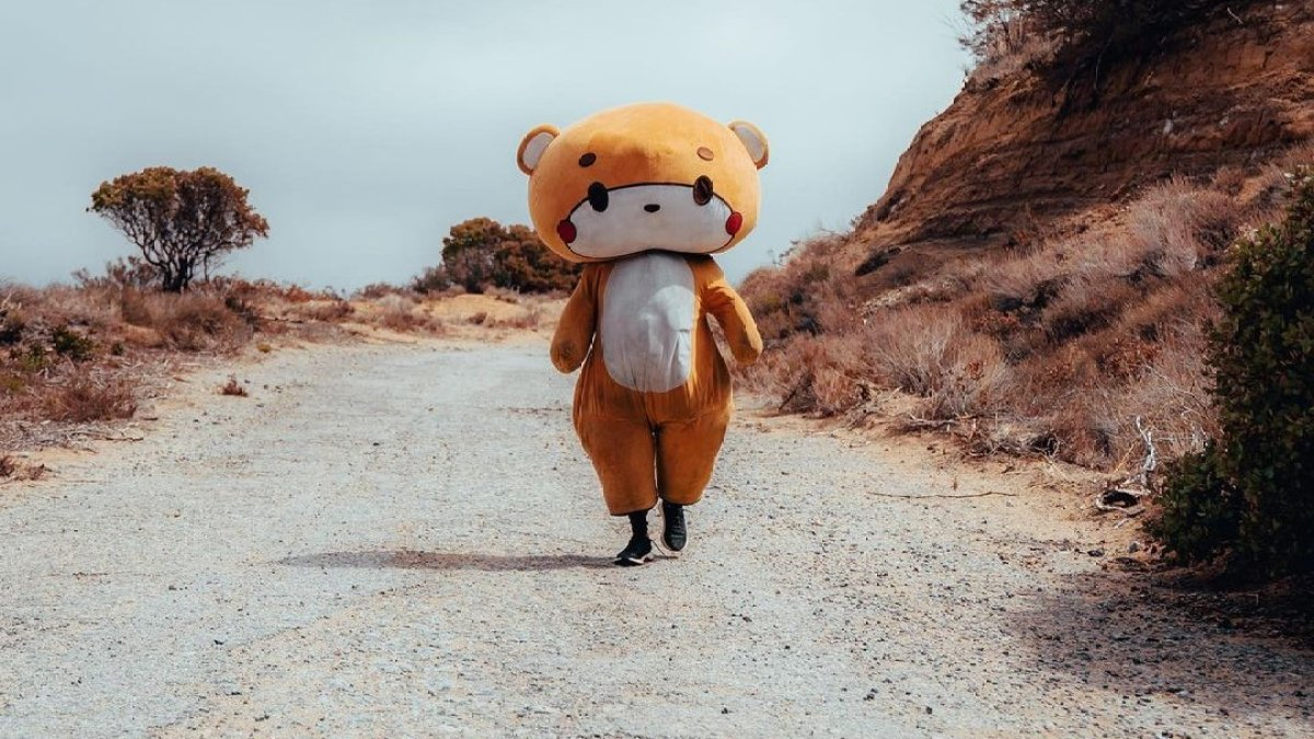 Мужчина в костюме медведя прошел 770 километров из Лос-Анджелеса в Сан-Франциско