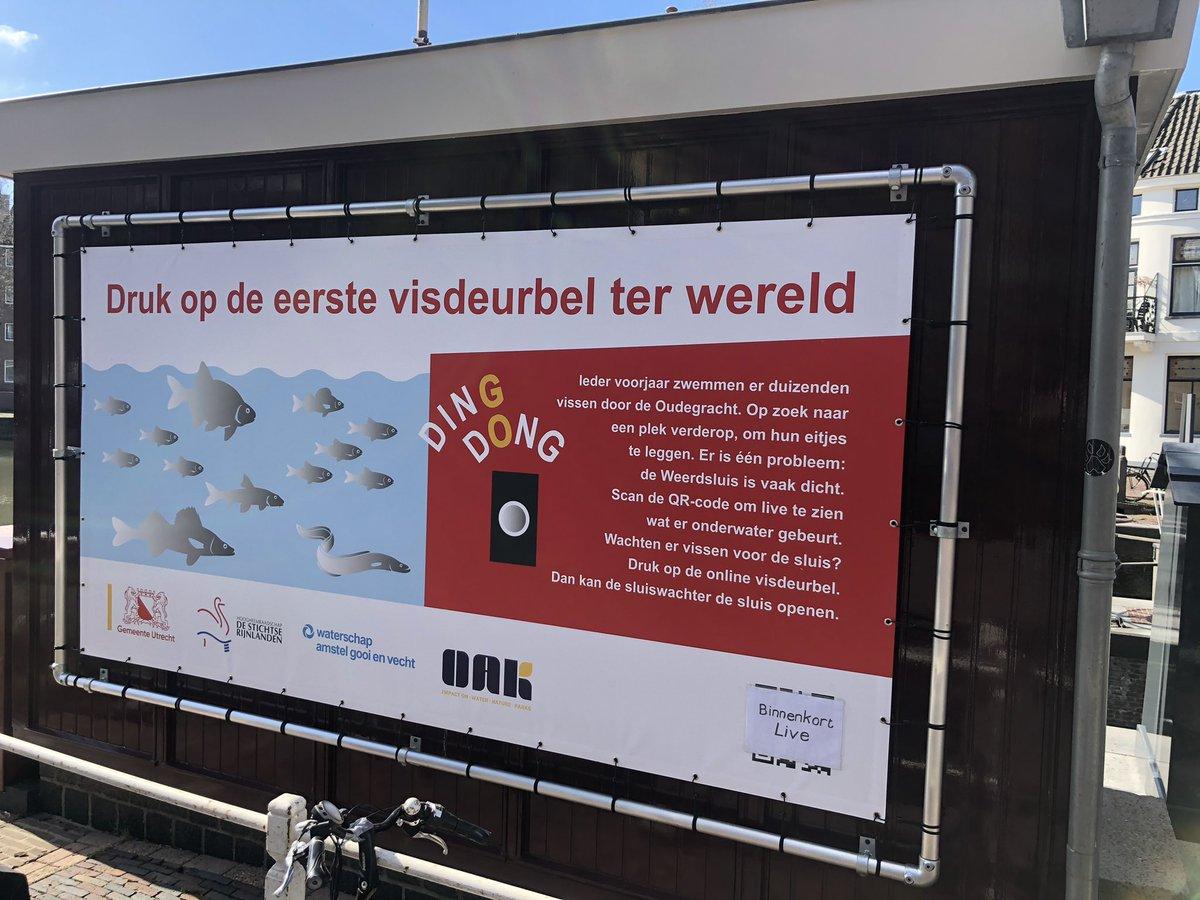 В нидерландский «дверной звонок для рыб» позвонили 32 тысячи человек. Зачем он нужен?