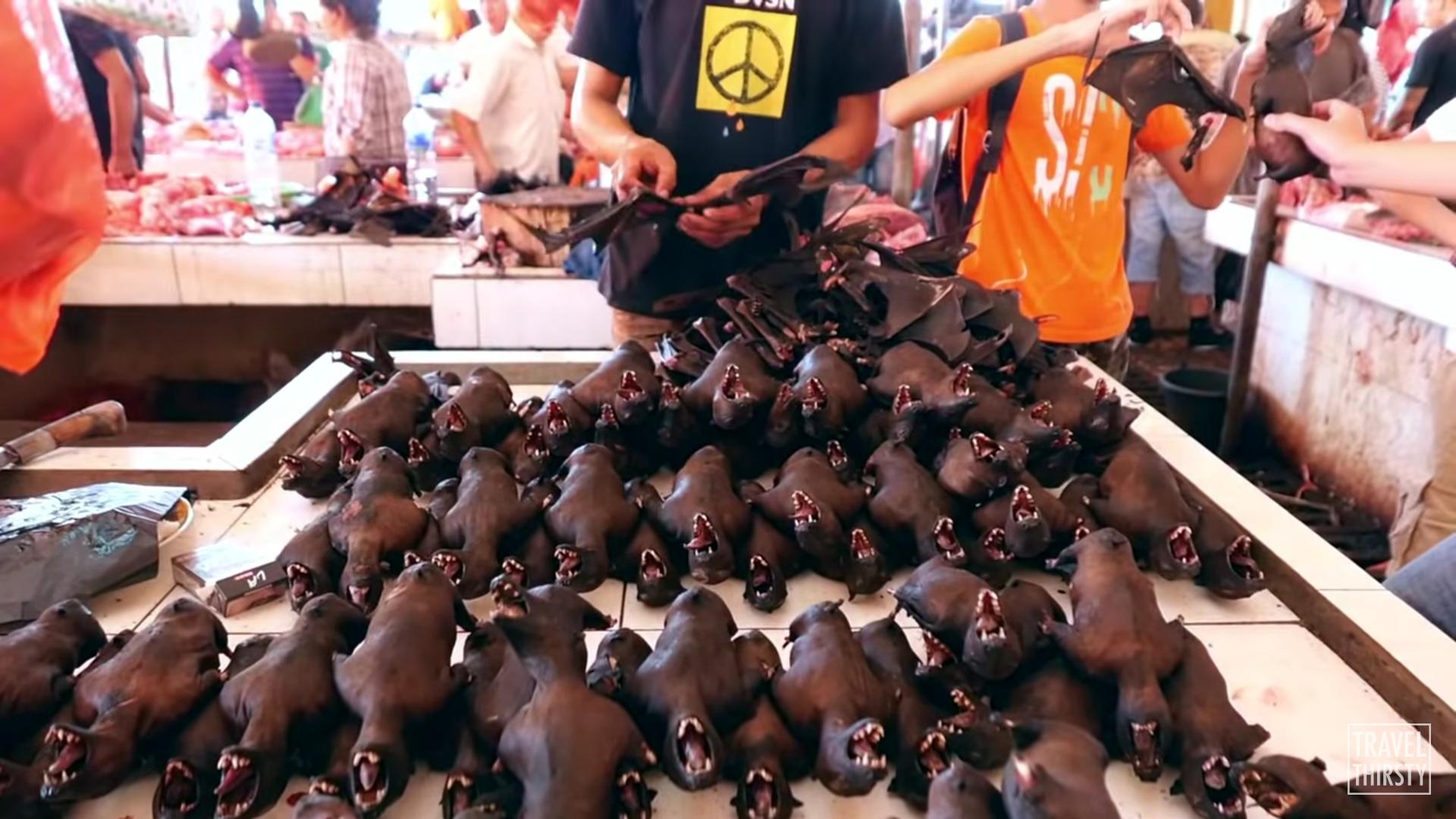 Летучие мыши на рынке в Индонезии. Фото — Travel Thirsty.