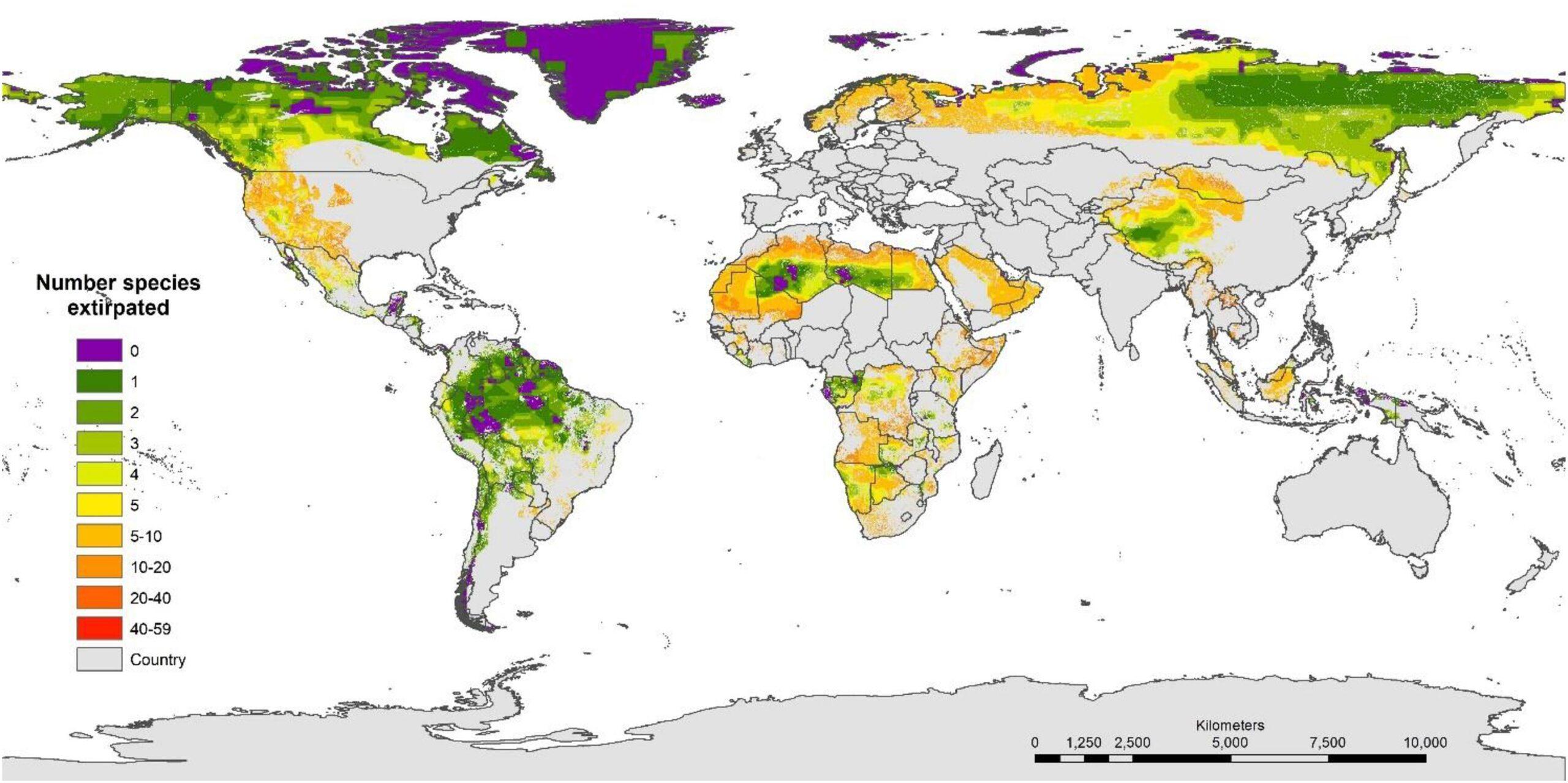 Карта – Frontiers in Forests and Global Change. Исследование не включало Антарктиду.