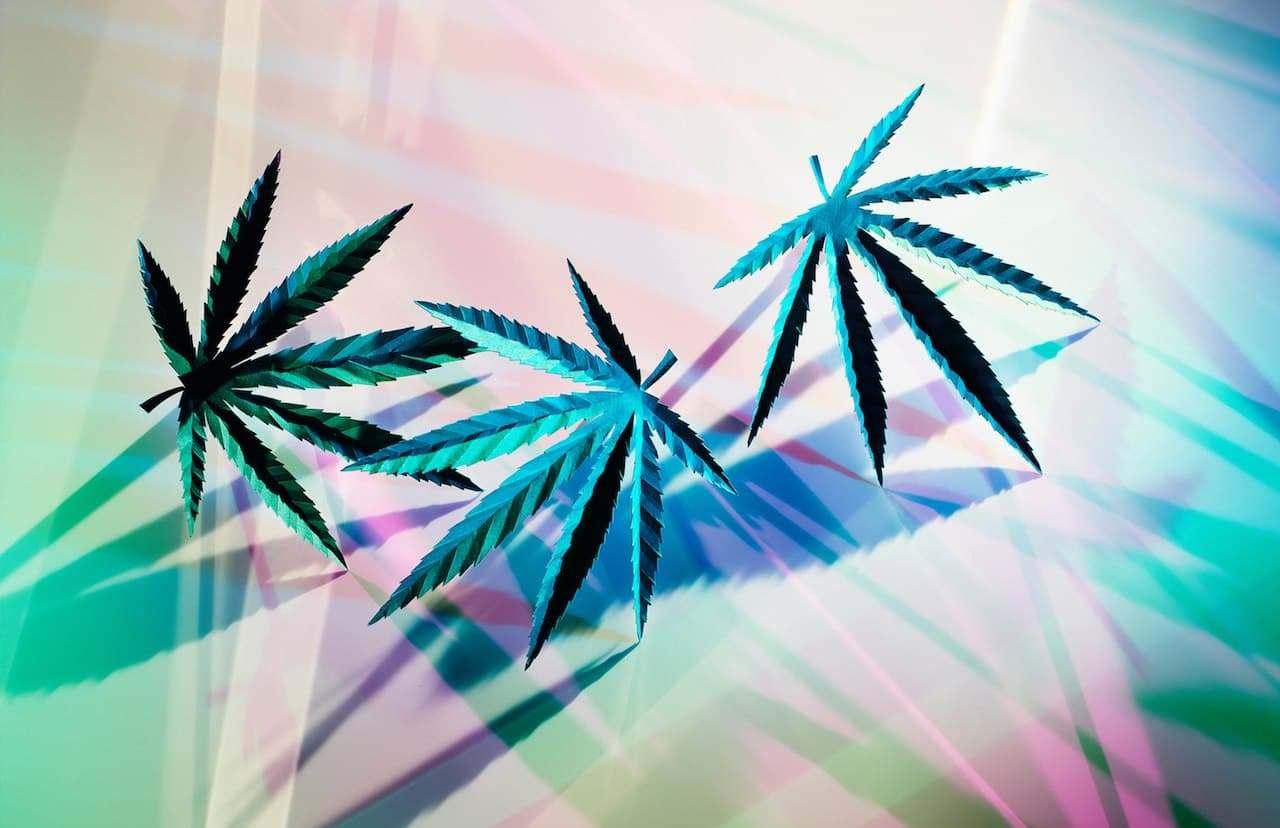 Вакансия дня. Тестировщик вейпа для марихуаны за 42 тысячи долларов в год