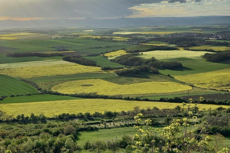 Снимок дня. Pac-Man на семи гектарах рапсового поля в Чехии