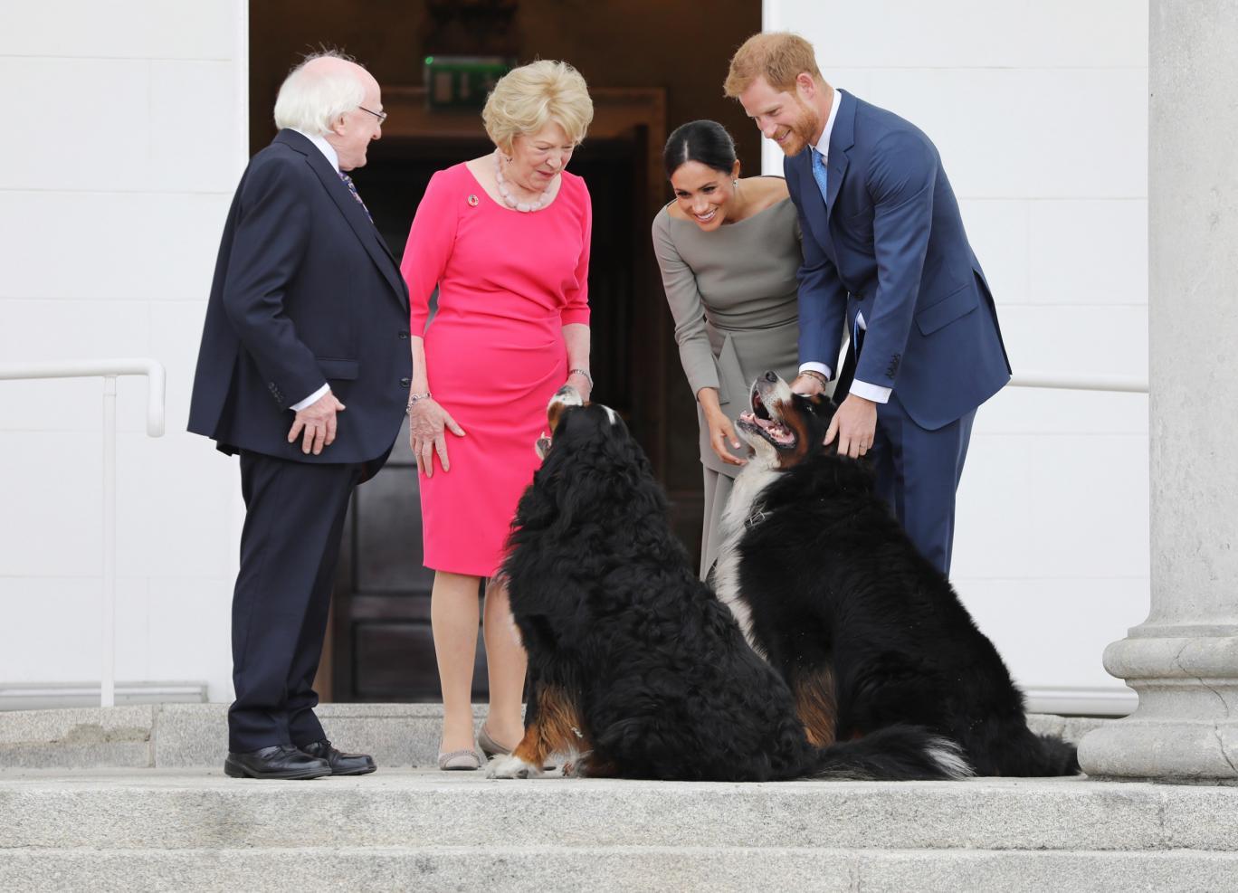 На фото — президент Ирландии Майкла Хиггинс, его жена и питомцы Брод и Мисних встречаются с принцем Гарри и Меган Маркл. Источник — Reddit.