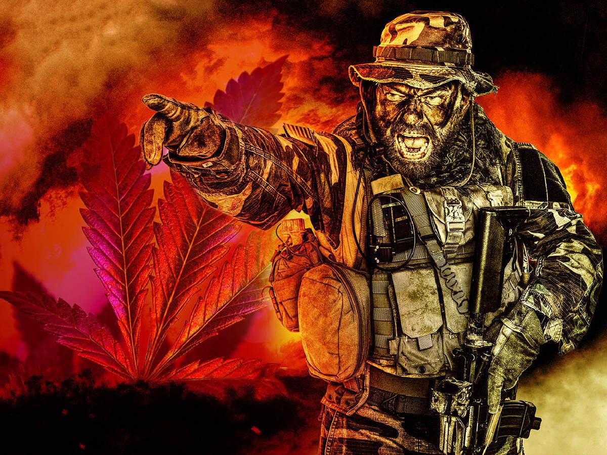 Канадская военнослужащая накормила артиллеристов кексами с марихуаной во время боевых учений