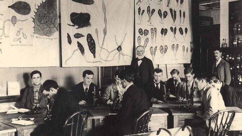 Уильям Джеймс Бил преподавал в учебном заведении, которое тогда называлось Мичиганским сельскохозяйственным колледжем. Фото — Michigan State University