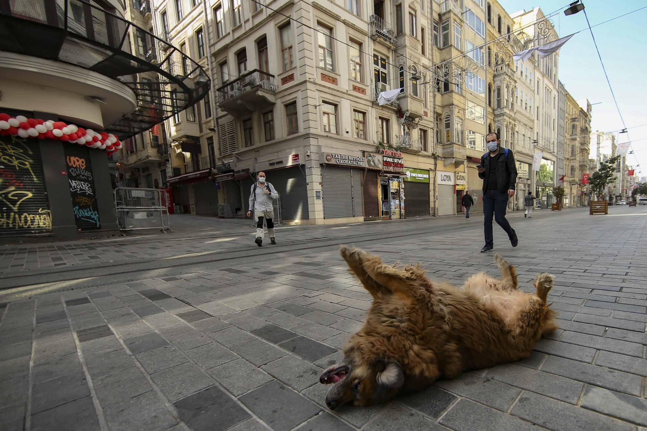 Турция отменяет комендантский час