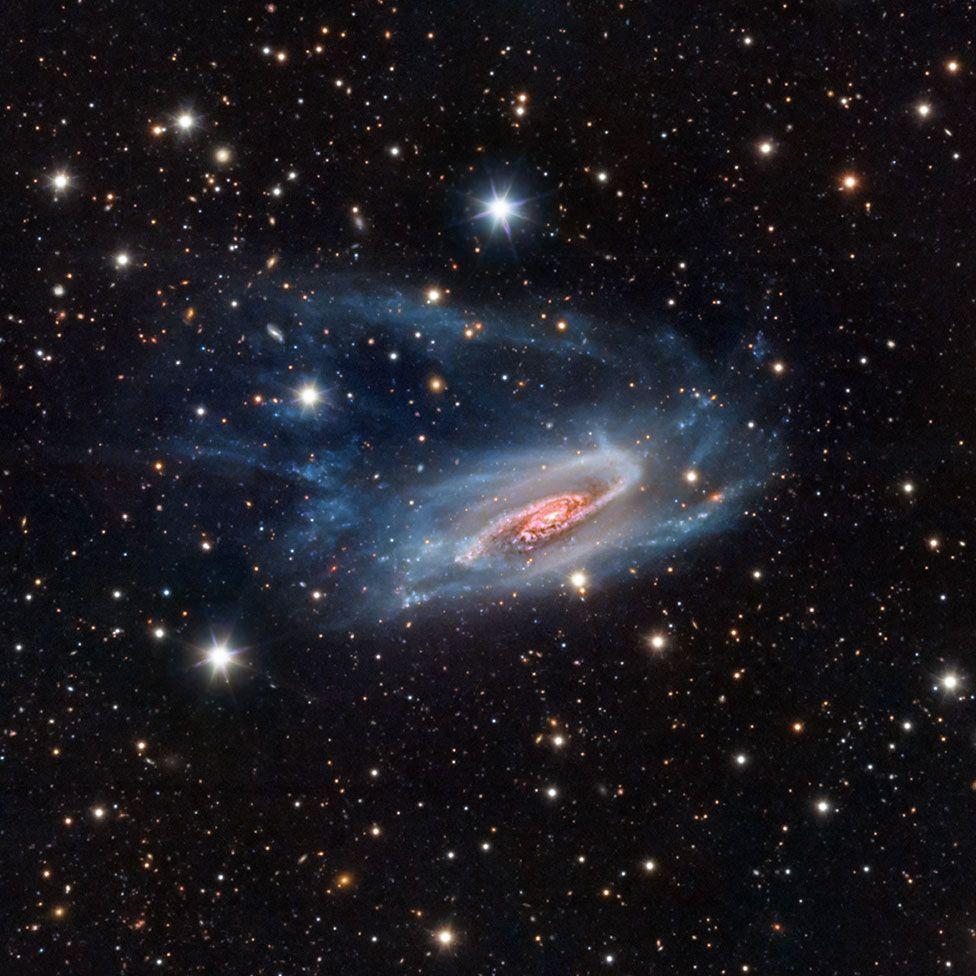 Галактика NGC 3981 в созвездии Чаши. Фото — Бернард Миллер из США.