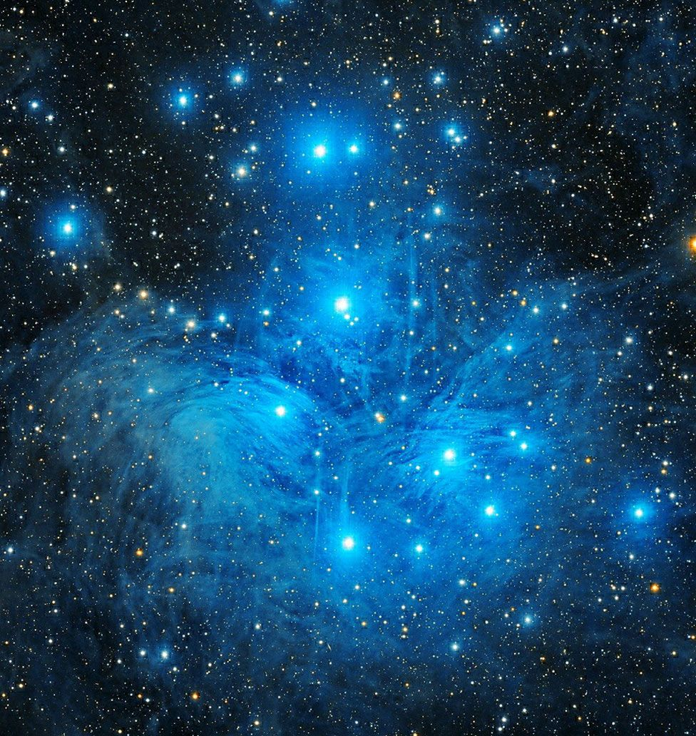 Звездное скопление Плеяды или «Семь сестер» в созвездии Тельца. Фото — Джашанприт Сингх Дингра из Индии.