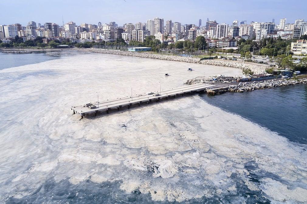 Морская слизь в Турции. Стартовала очистка побережья