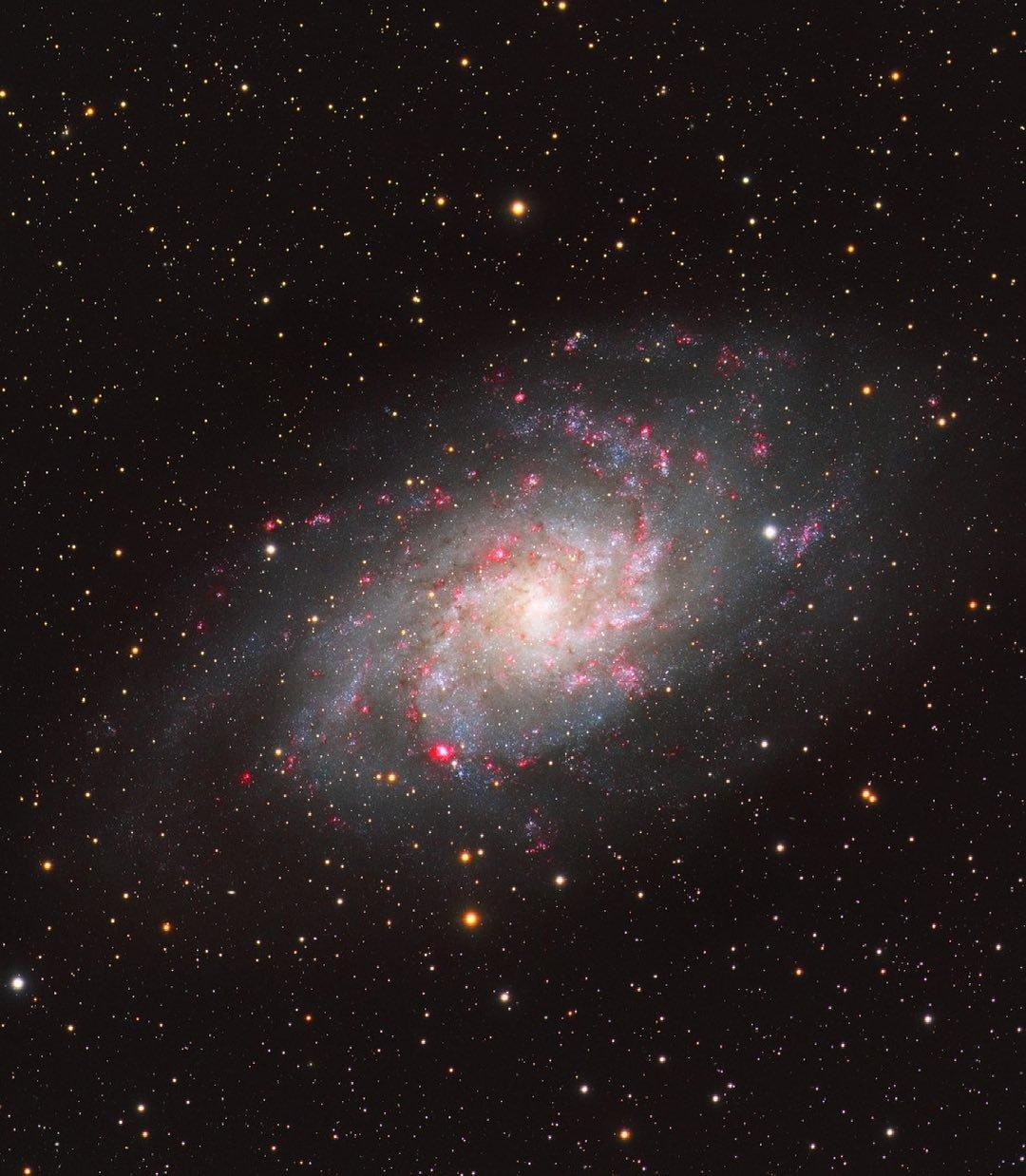 Галактика Треугольника. Фото — Бенджамин Чизи.