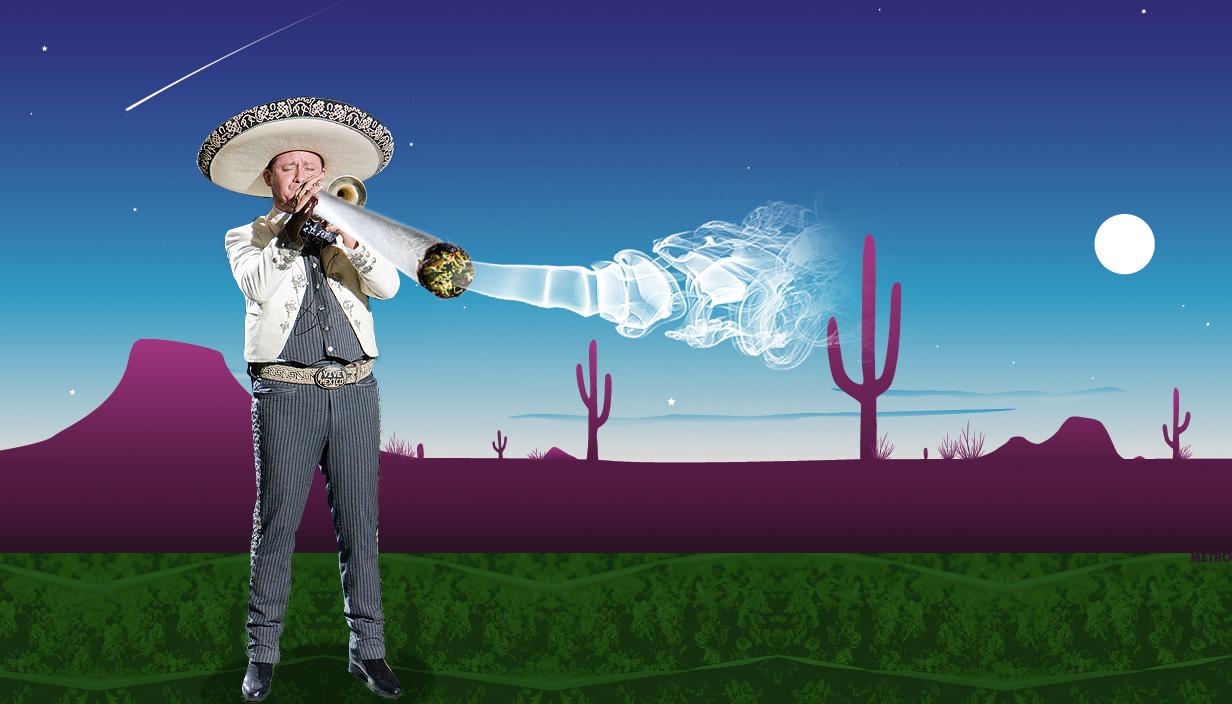 В Мексике декриминализировали рекреационное употребление каннабиса