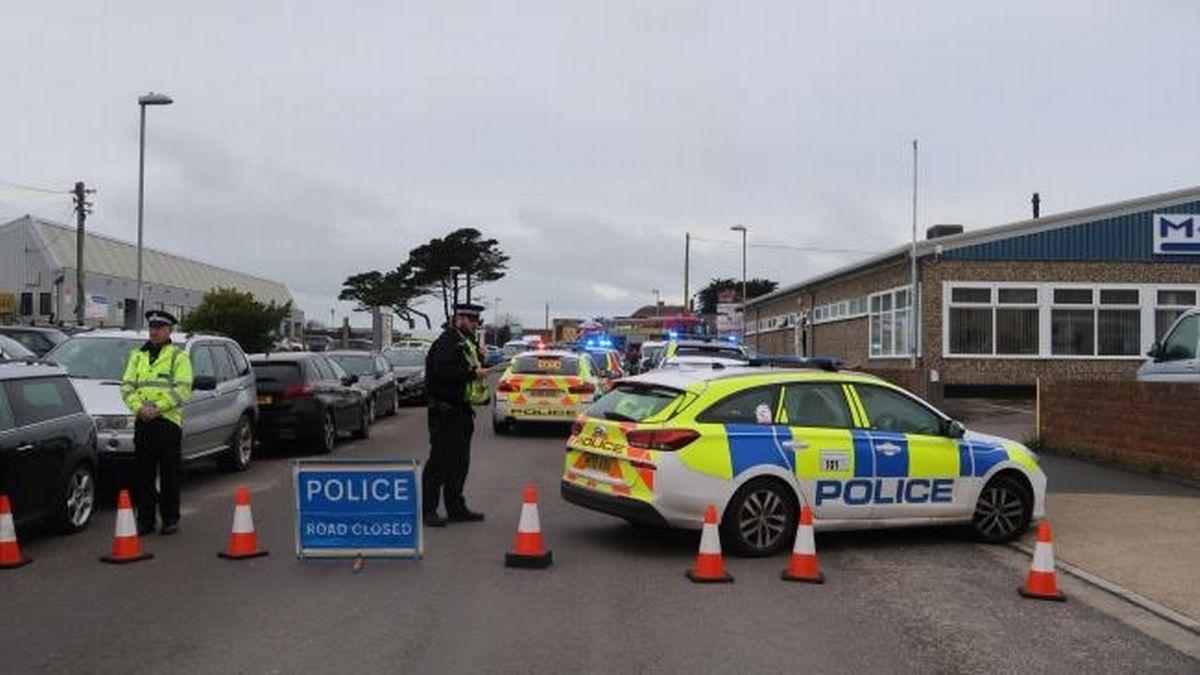 Фото — Dorset Echo / BNPS.