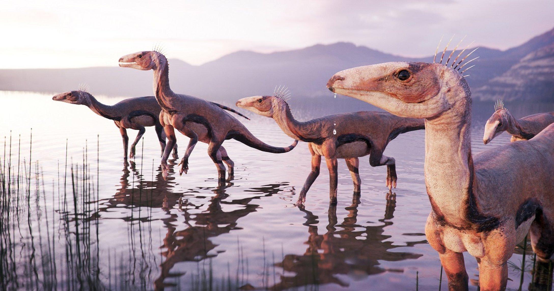 Так выглядели Silesaurus opolensis.
