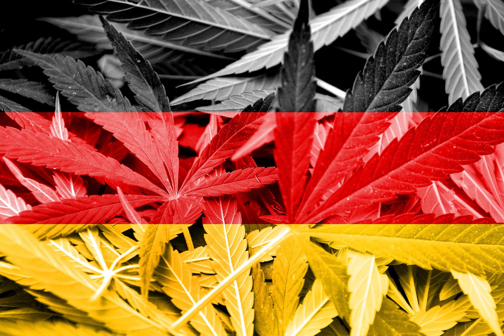 Германия начала продажу государственного медицинского каннабиса в аптеках