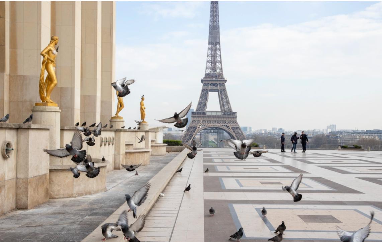 Франция внесла Украину в «зеленую зону». Что это значит