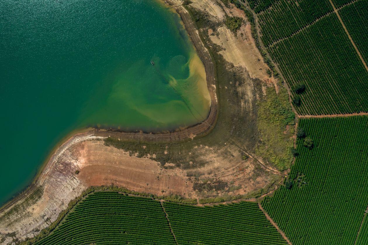 Сухой берег реки рядом с кофейной плантацией в Бразилии. Фото — Jonne Roriz / Bloomberg News.