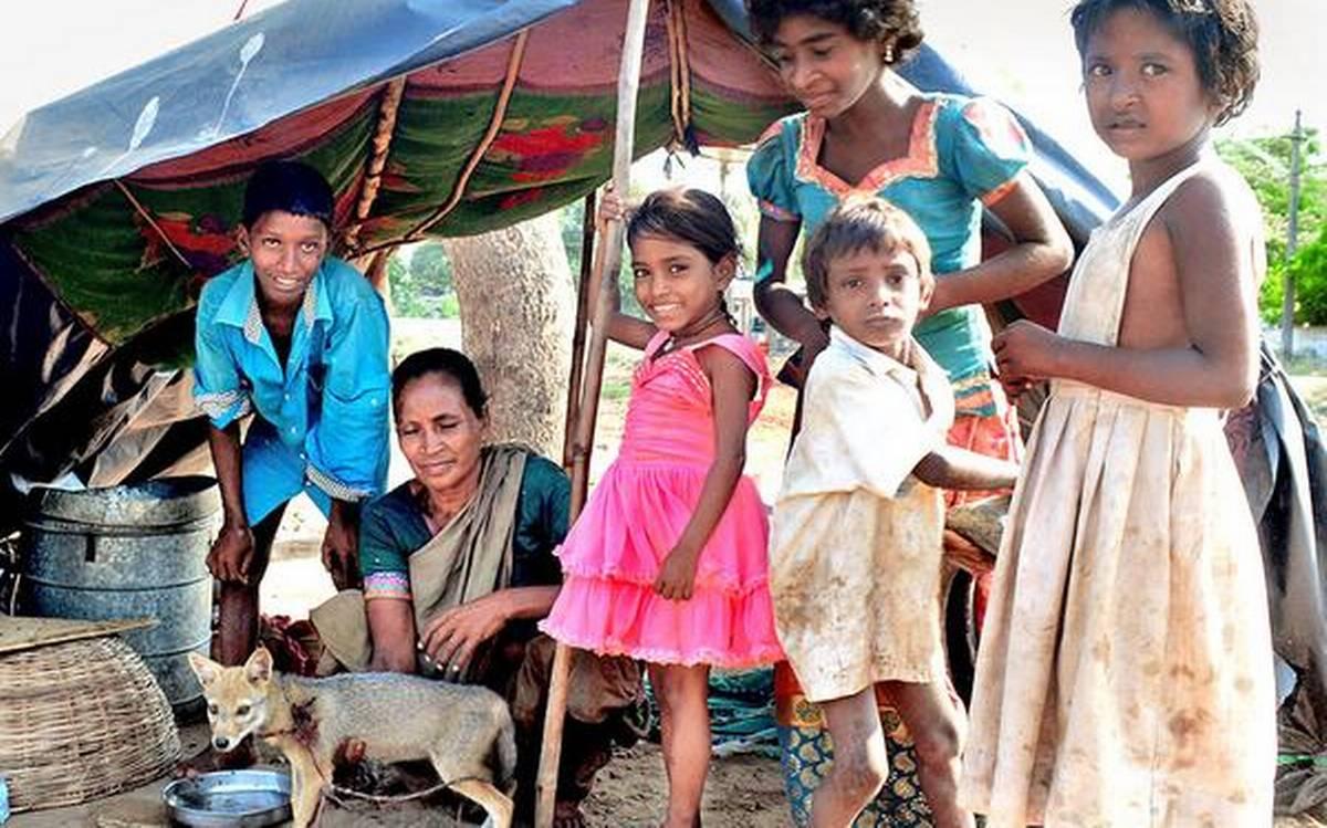 Фото — The Hindu.