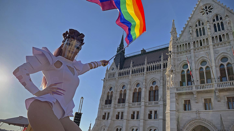Венгрия ограничила продажу детских книг об ЛГБТ. Что запретили